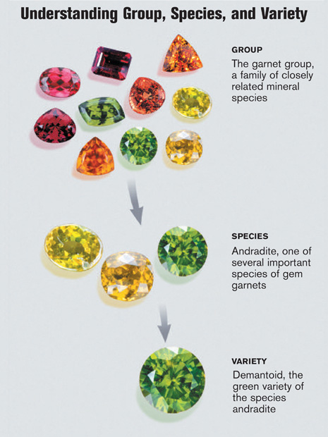 Garnets are a group of closely related minerals in a range of colors.