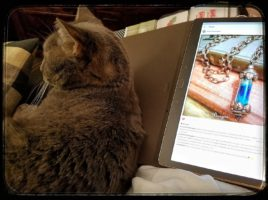 PhoenixFire Designs Shop Assistant and Helper cat, Gracie, assists with cuddles as I post on instagram.