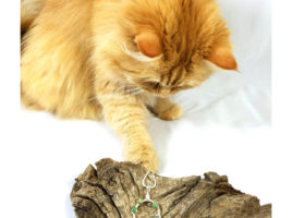 PhoenixFire Designs Official Shop Assistant Ginger helps in product photo for my Green Opal Dainty Circle Necklace, helper cat.